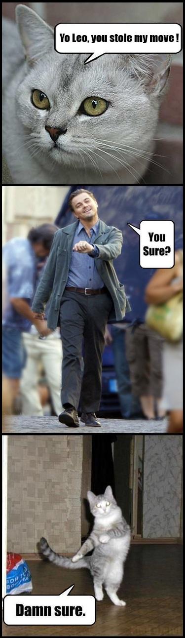 Yo Leo you stole my move!