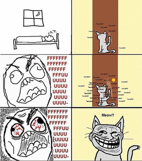 Meow? Problem? TrollFace