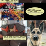 Dog Fort Comics &#8211; Package located